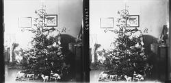 Julefeiring, interiør hos familien Q. Wiborg med juletre, le