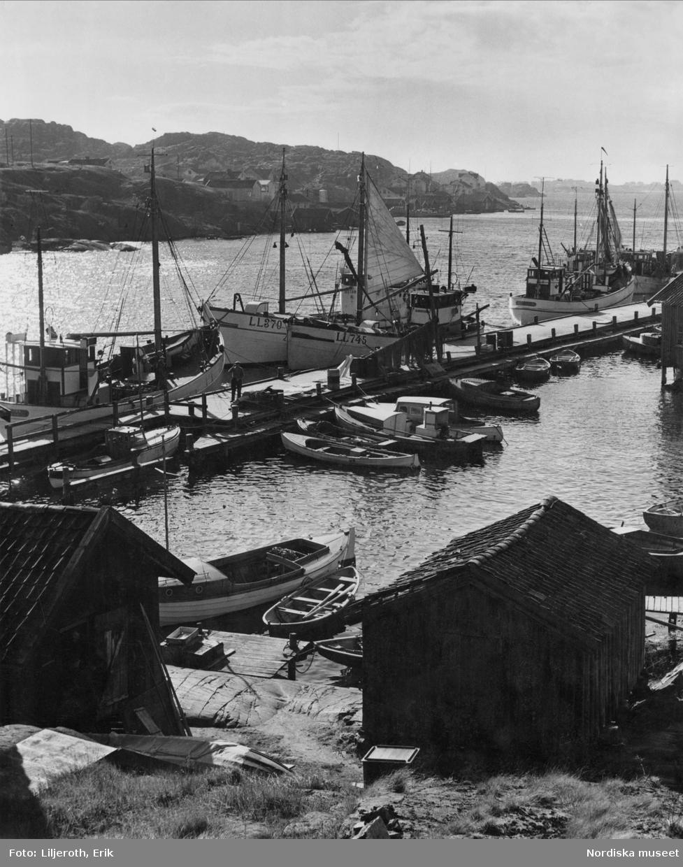 Moderna bryggor och fiskebåtar mot en förgrund av traditionellt utformade sjöbodar