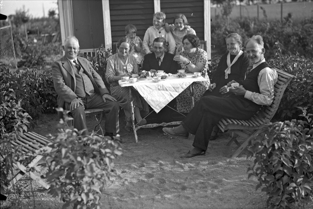 Vid kaffebordet i Flora koloniförening, Fålhagen, Uppsala