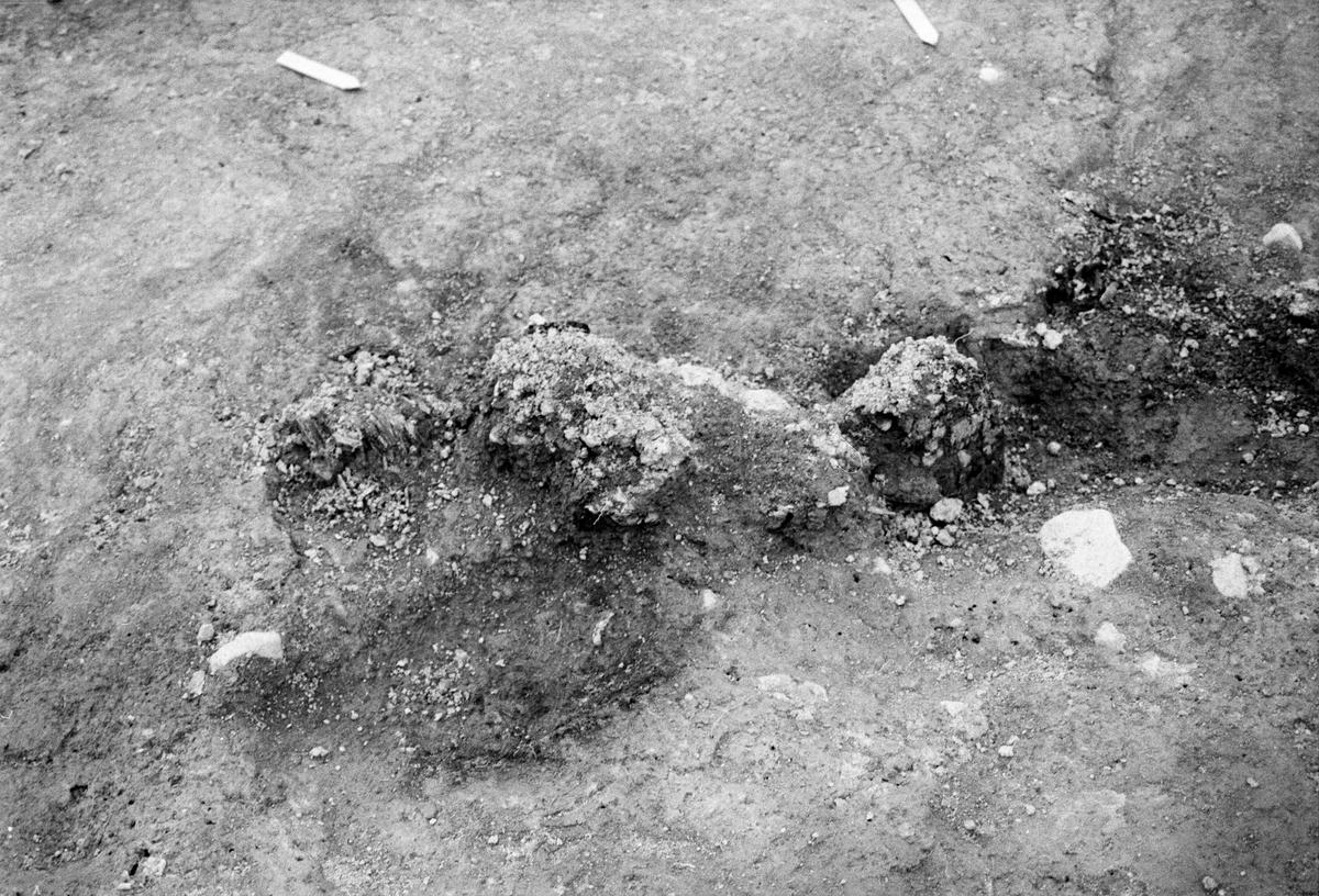 Kungsgårdsplatån - Arkeologi Gamla Uppsala 1991
