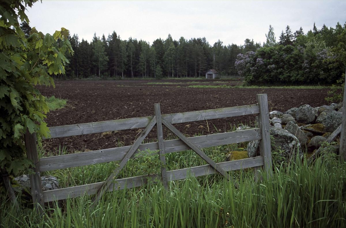 Landskapsvy med åkermark, Hållen 5:25, Hållen, Hållnäs socken, Uppland 2000