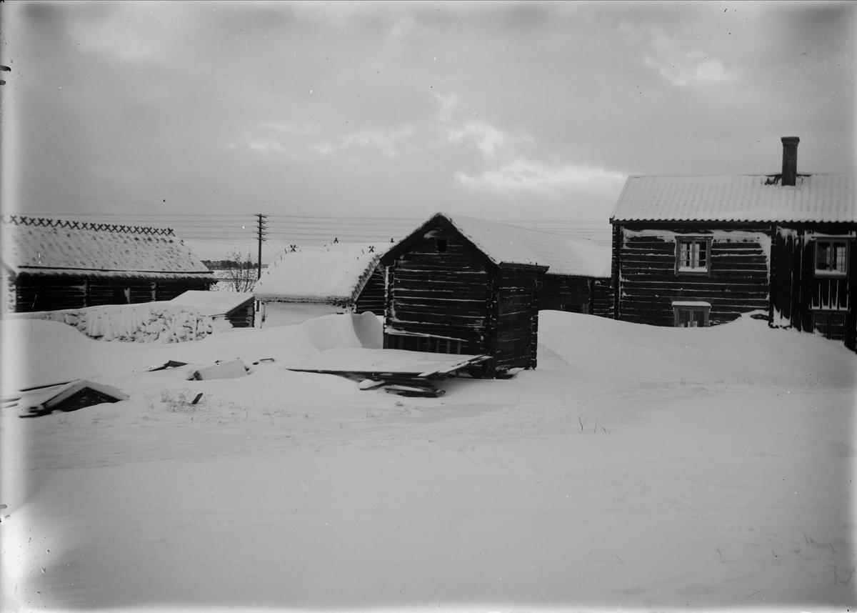 Friluftsmuseet Disagården, Gamla Uppsala vintern 1931
