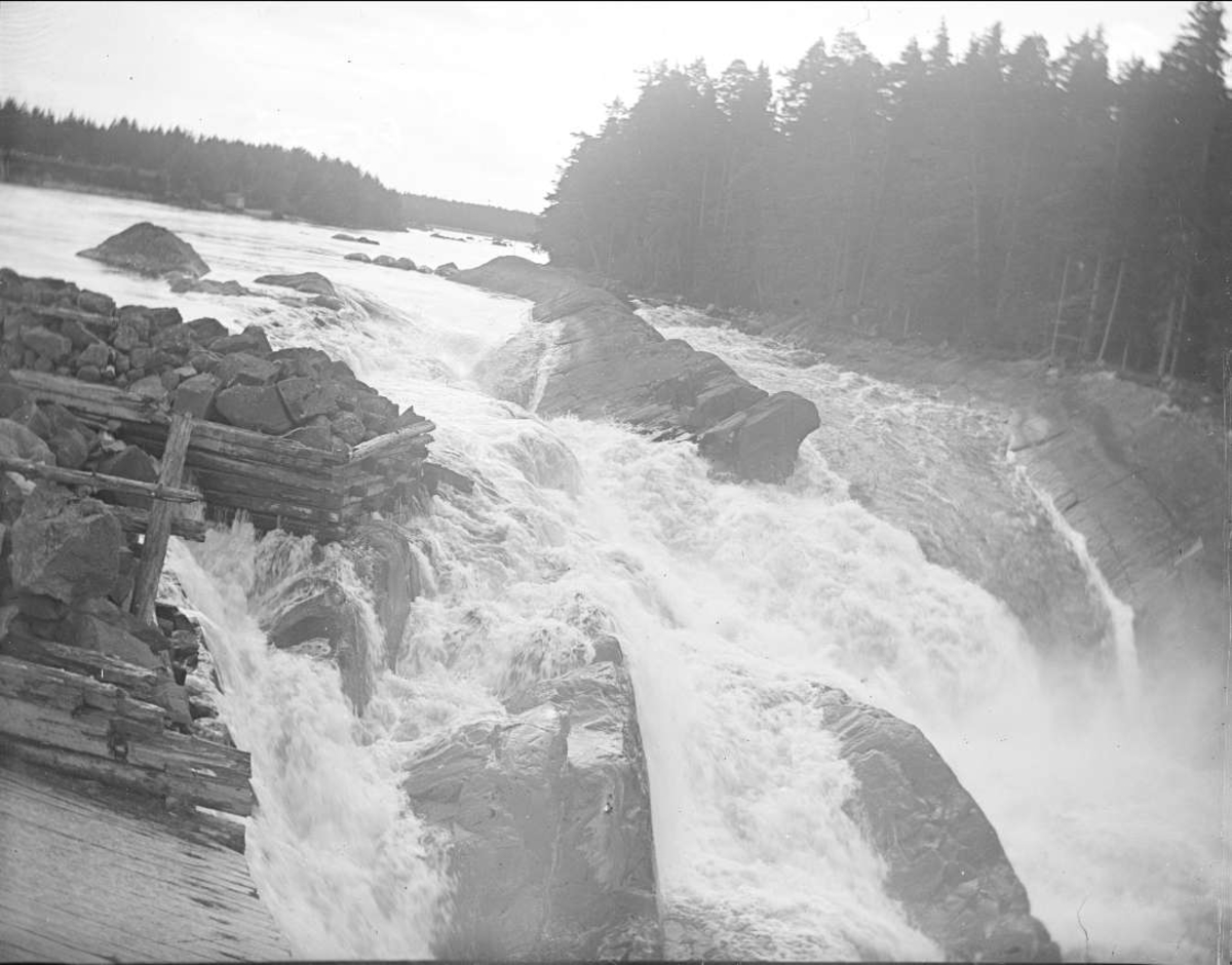 Storfallet i Lanforsen vid Älvkarleö, Älvkarleby socken, Uppland i augusti 1910