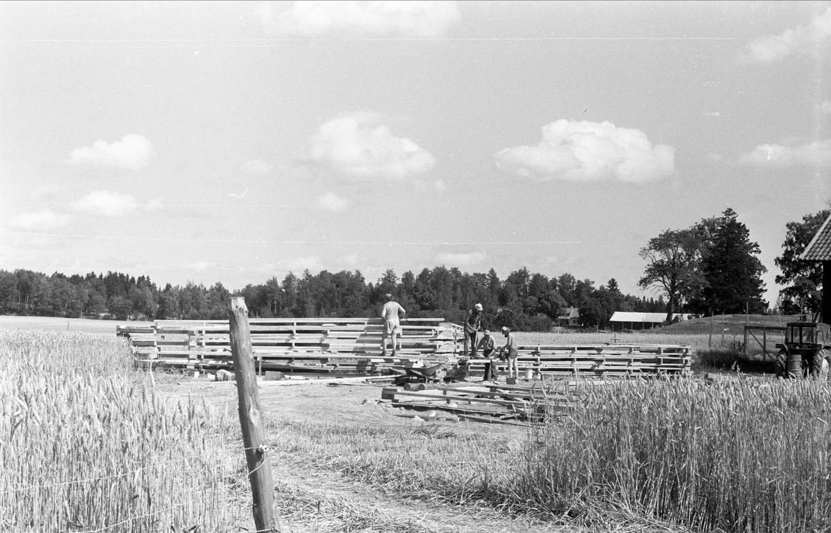 Nya ladugården, Lytta 6:1, Bälinge socken, Uppland 1976