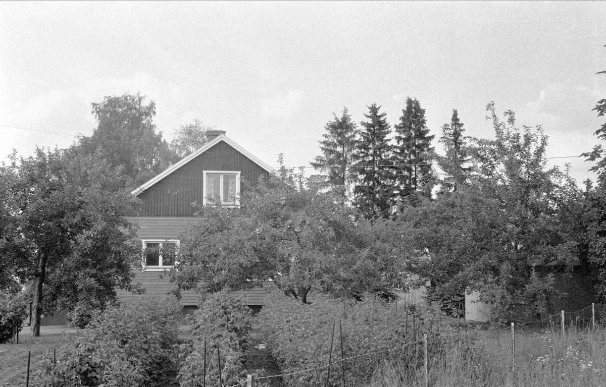 Villa, Lövsta 4:5, Lövstalöt, Bälinge socken, Uppland 1976