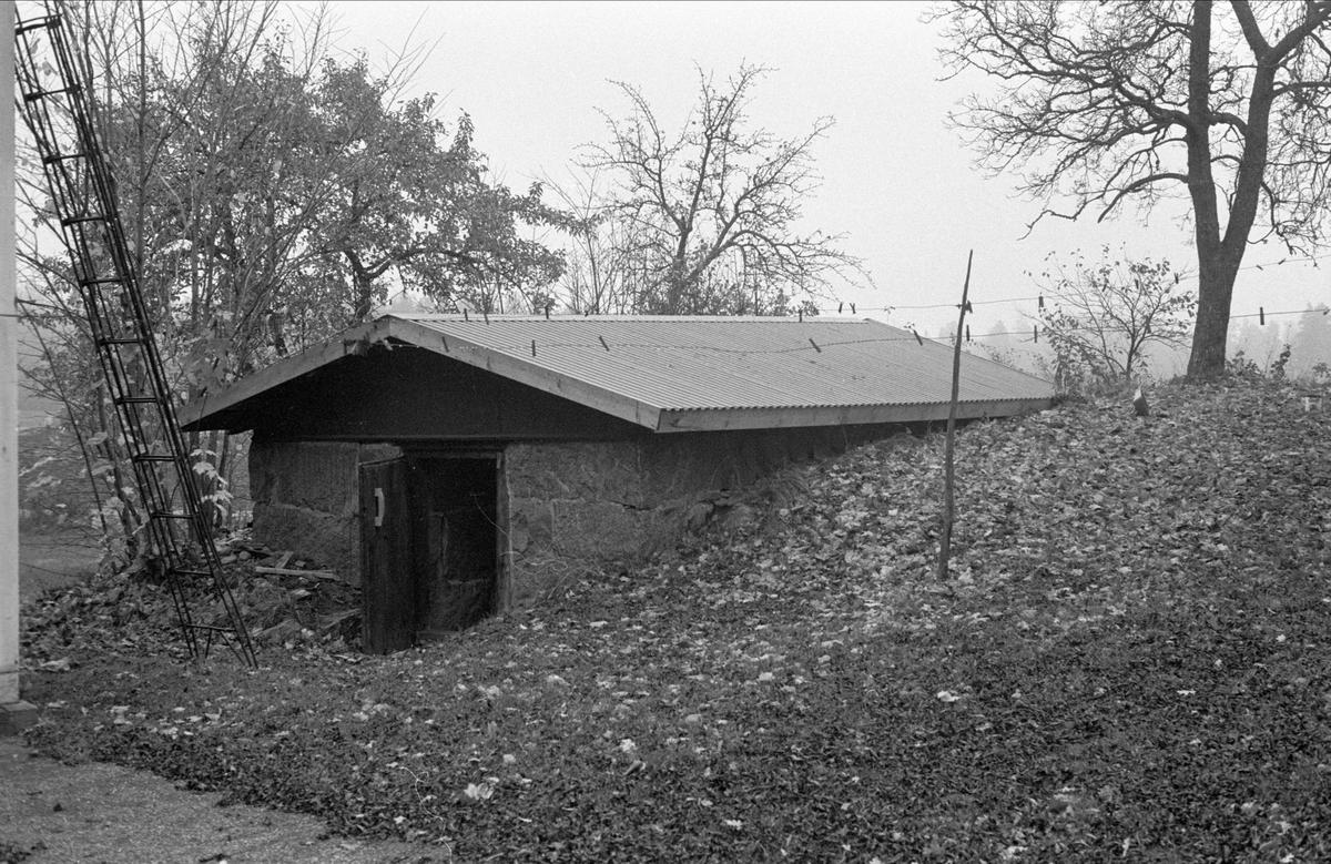Källare, Hässle 4:3, Dalby socken, Uppland 1984