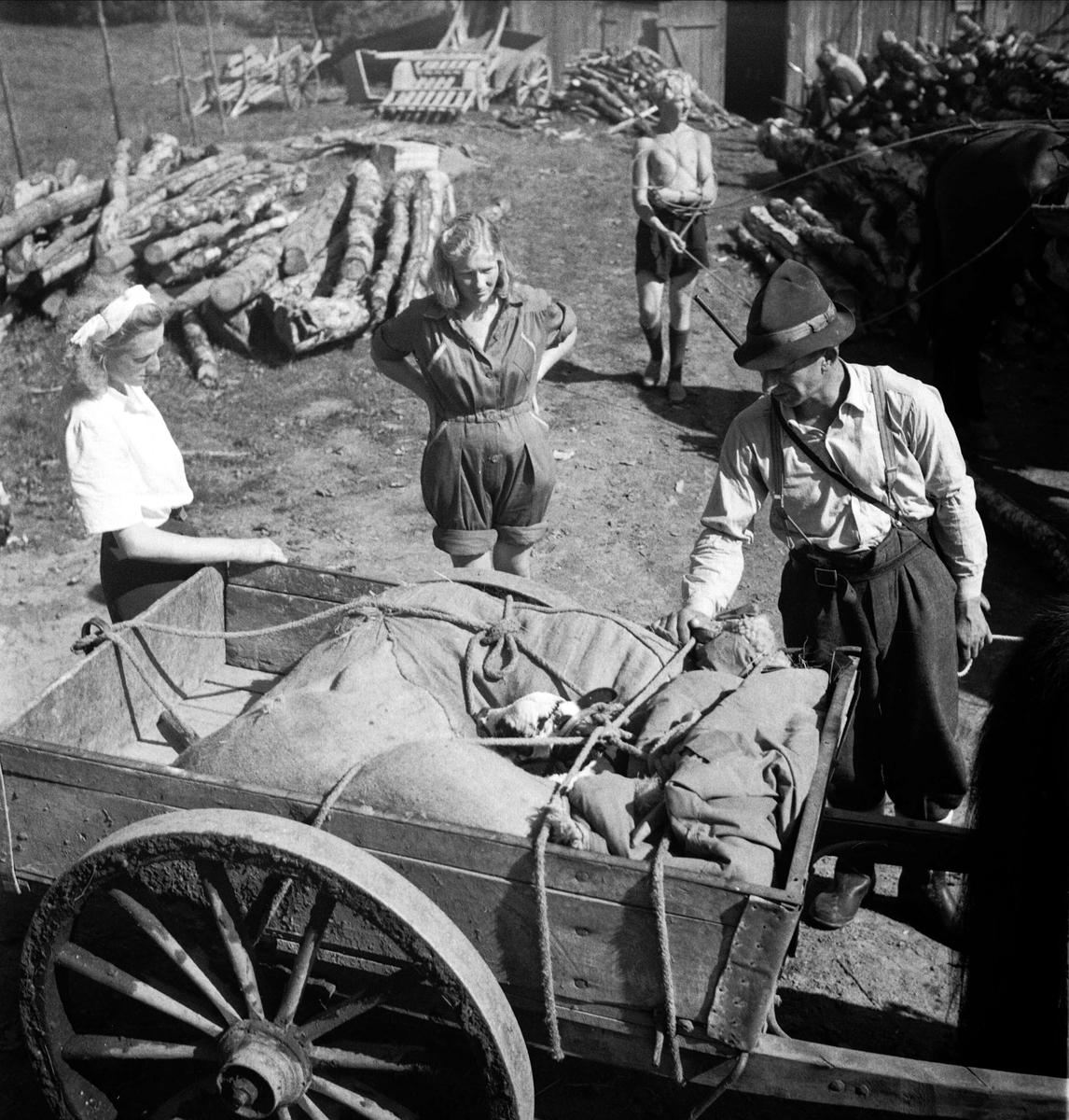 Kvinnor och man vid kärra, Norge 1947