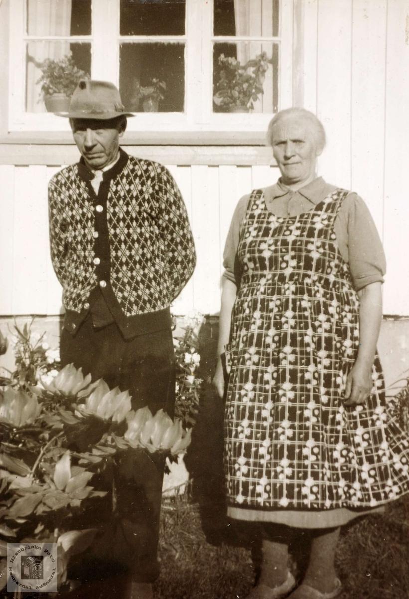 Portrett av ekteparet Børuf og Ranni Hårtveit. Grindheim Audnedal.