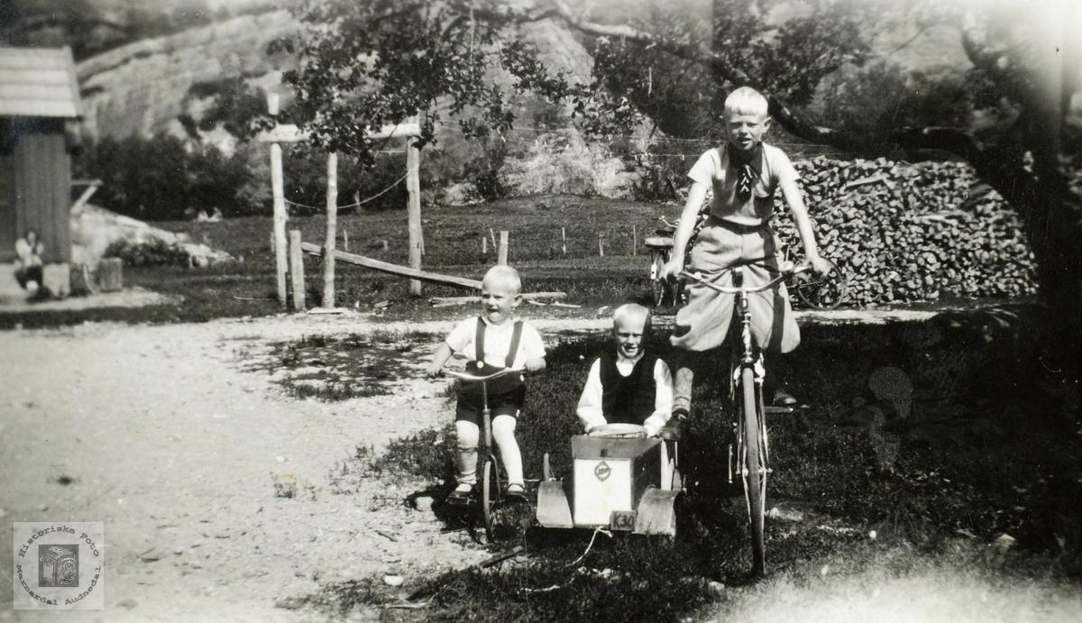 Tre brødre Ågedal med forskjellige kjøretøy. Audnedal.