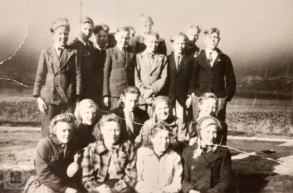 Lesarborn samla for Grindheim og Bjelland.