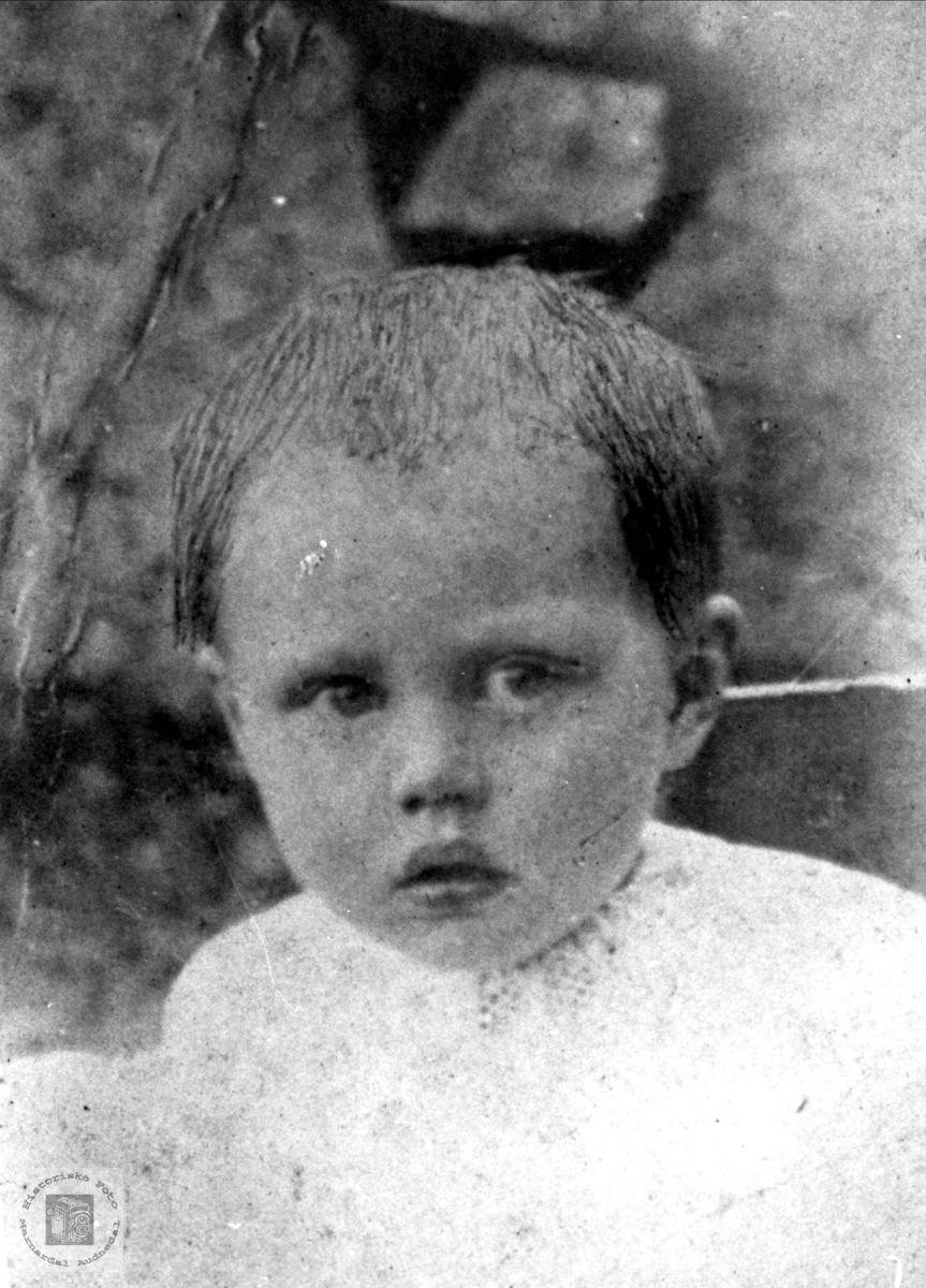 Barneportrett av Tomine Madland-Vassbotn, Åseral.