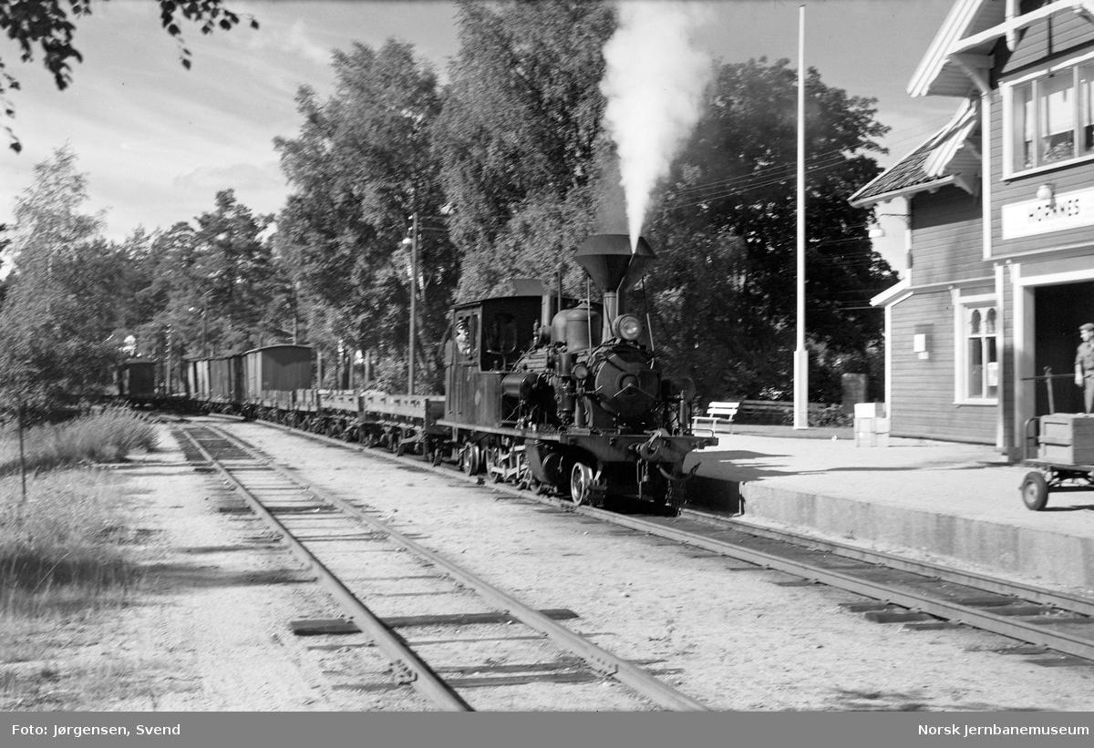 Damplokomotiv nr. 5 med godstog på Hornnes stasjon