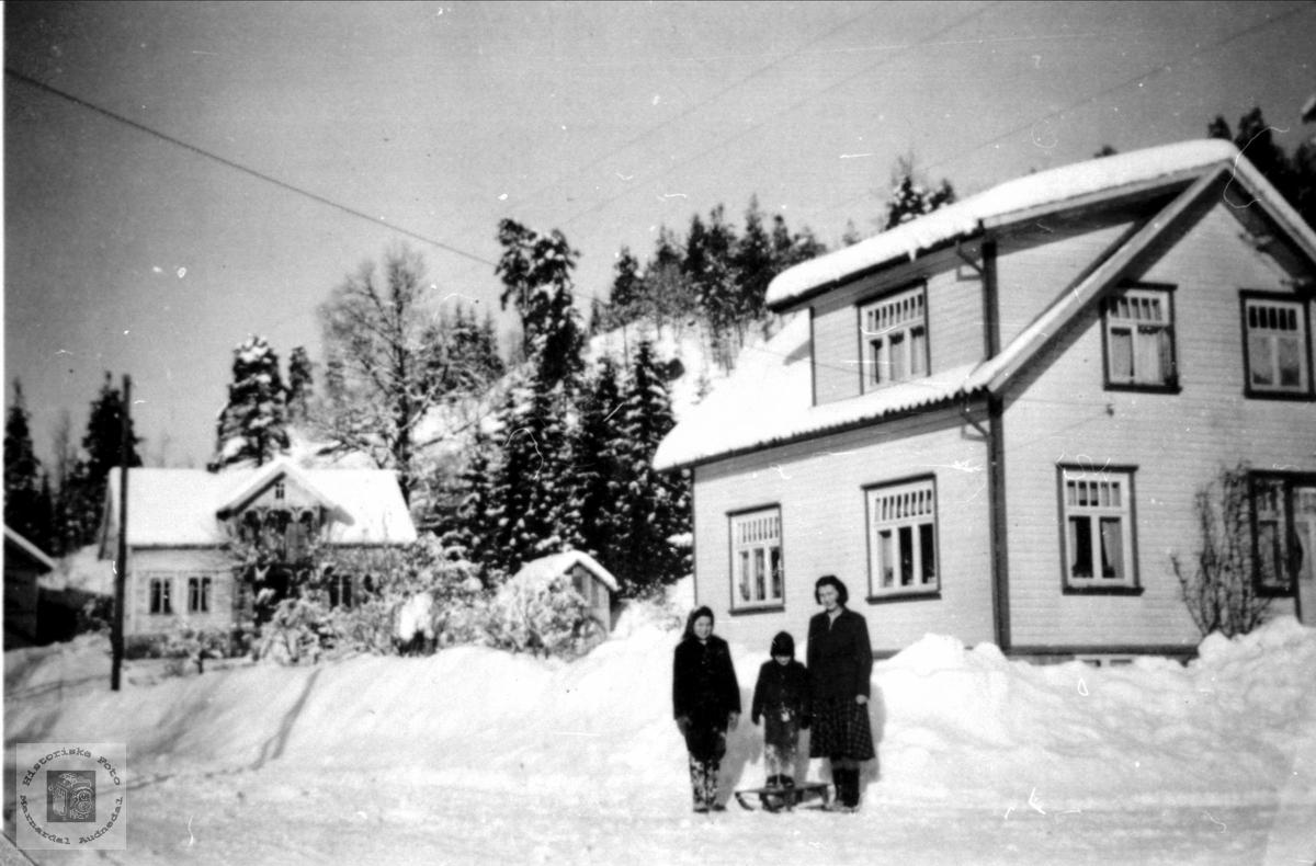 """Nåstads og """"Besta`s hus"""". Øyslebø."""