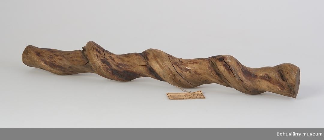 """""""Underlig stamform Vitis art? Australien Tasmanien 1862. Gåva Hilmer Hedberg, Hobarttown"""" enligt text på äldre etikett.  Spiralvuxen stam av ett hårt träslag. En avsågad bit."""