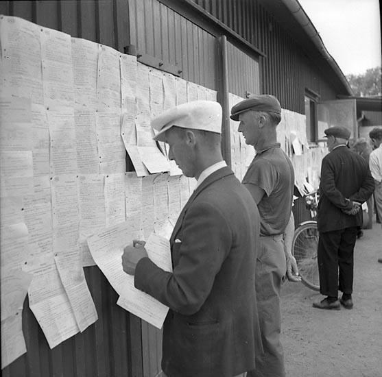 """Enligt notering: """"Livdjursauktion V.S.S. 22/5 1947""""."""