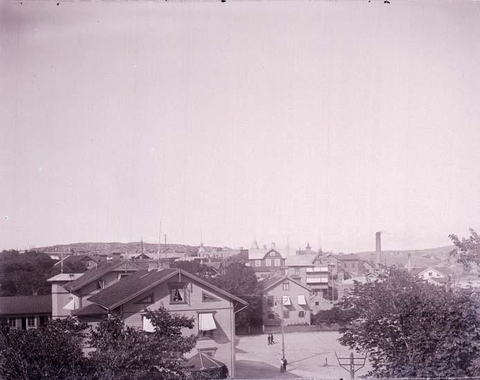 """Enligt text som medföljde bilden: """"Utsikt från Rosviksberg (Richters)"""" ::"""