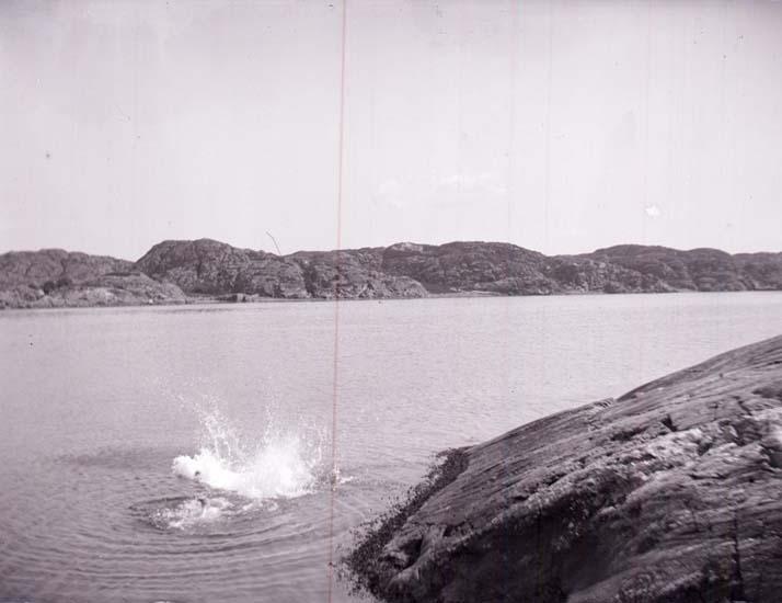 Bad i Gullmarsfjorden