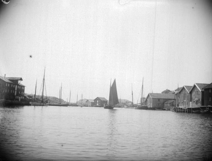"""Enligt text som medföljde bilden: """"Smögen. Smögens Hamn 9/7 1899."""" ::"""