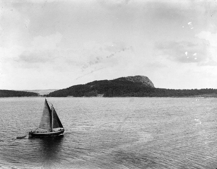 """Enligt fotografens noteringar: """"Högås. Hafstens Kullen 1918."""""""
