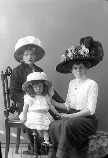 """Enligt fotografens journal nr 2 1909-1915: """"Nilsson, Fru Ödalen Här""""."""