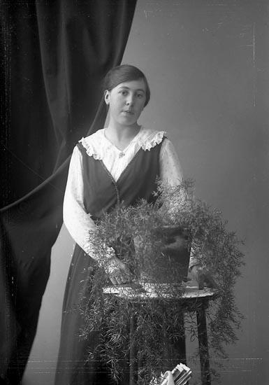 "Enligt fotografens journal nr 4 1918-1922: ""Karlsson, Annie Kil, Hjälteby""."