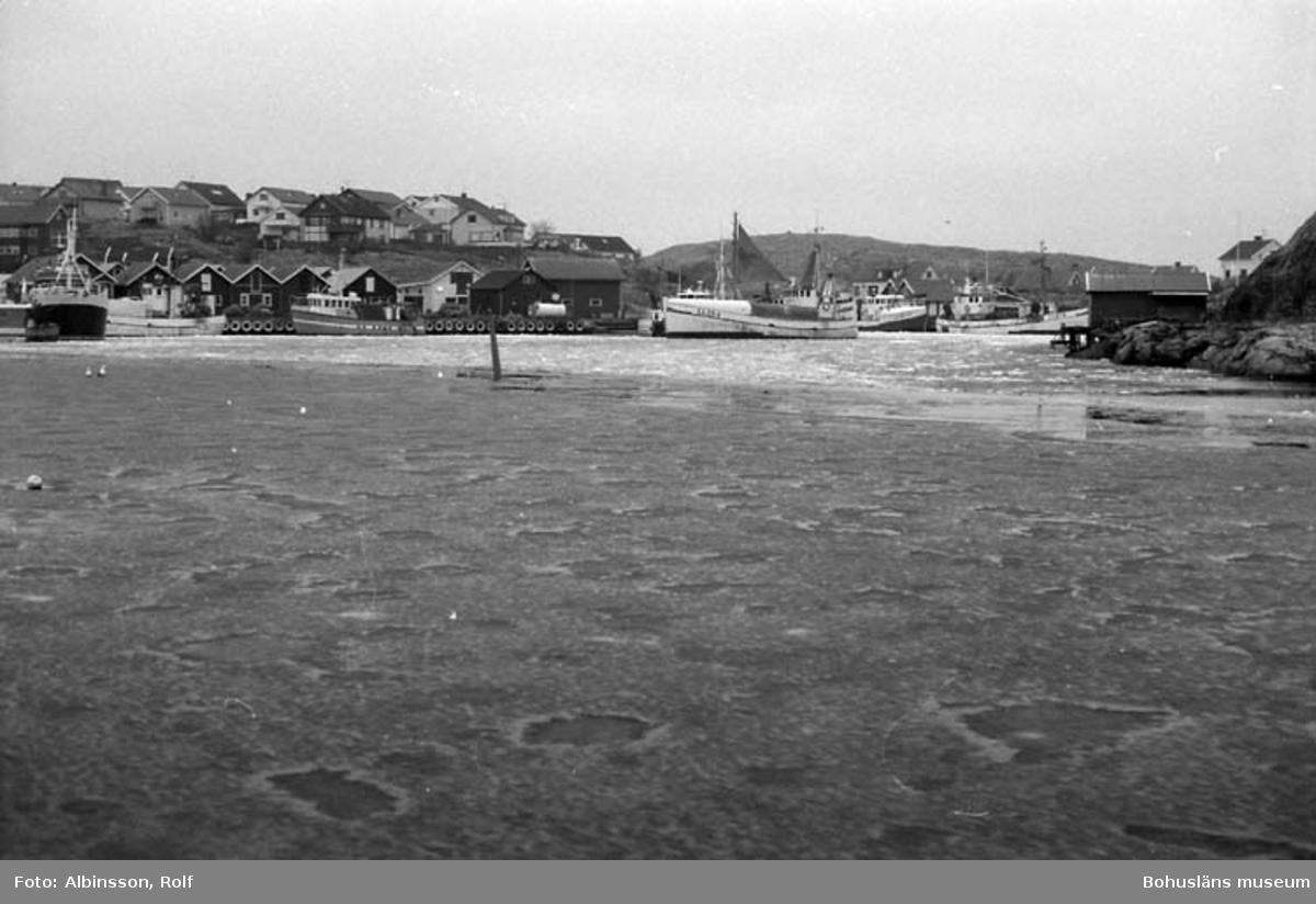 """Enligt fotografens noteringar: """"Bild från Nya hamnen. Här ligger de flesta av fiskebåtarna."""" Fototid: 1996 den 12 januari."""