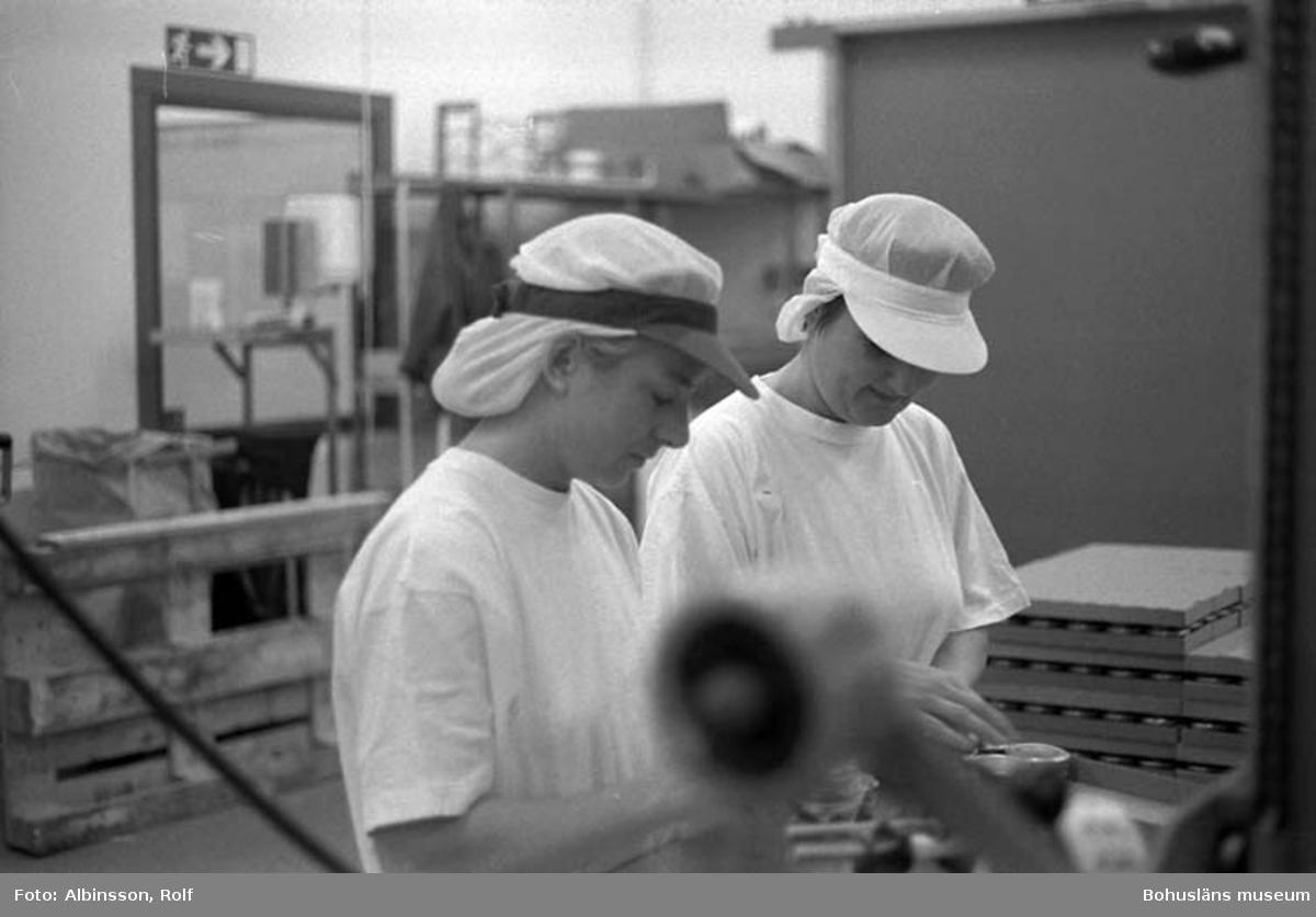 """Enligt fotografens noteringar: """" ... närmast i bild Birgitta Karlsson och Anne-Maj Karlsson tar sig an burkarna och lägger dom i brickor."""" (AC. Fortsättning från bild 232). Fototid: 1996-01-19."""