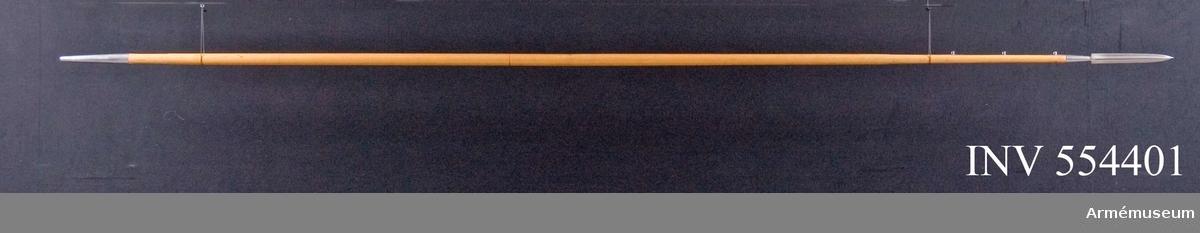 Lans m/1851 för Livregementet till häst. Grupp D I. Spetsens l: 284 mm. Spjutbladets l: 217 mm, stb: 265 mm. Skaftskenornas l: 465, bredd upptill: 13 mm, nedtill 12 mm. Doppskons l: 185 mm. Doppskoskenornas l: 106 mm, b: 15 mm. Spjutbladet är tveeggat med höga ryggar. Holken är konisk. De båda skaftskenorna utgår från spetsens eggsidor och hålles  fast av fyra genomgående skruvar. Av de sistnämda har den  bakersta med skåra försett huvud, men var och en av de tre andra  har klotrunt, av ett hål genomborrat huvud. De tre sistnämda  skruvarna sitter omkring 125 mm från varandra. Skaftet är gulförnissad ask. Lansens tyngdpunkt skulle egentligen utmärkas genom en inbränd  rand, men på detta exemplar sitter randen, här röd, åtskilligt  bakom tyngdpunkten. Doppskon har formen av en stympad kon. Var och en av de båda  korta doppskoskenorna hålls fast med två träskruvar. Lansen är synnerligen hårt putsad.Till lansen skall höra en armrem. (Se AM 1932:7542.)