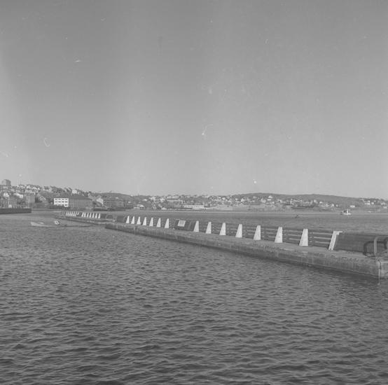 """Text till bilden: """"Pontonbryggor Lysekil, för Oscardals fabriker, Lödöse. 1953.11.19""""           i"""