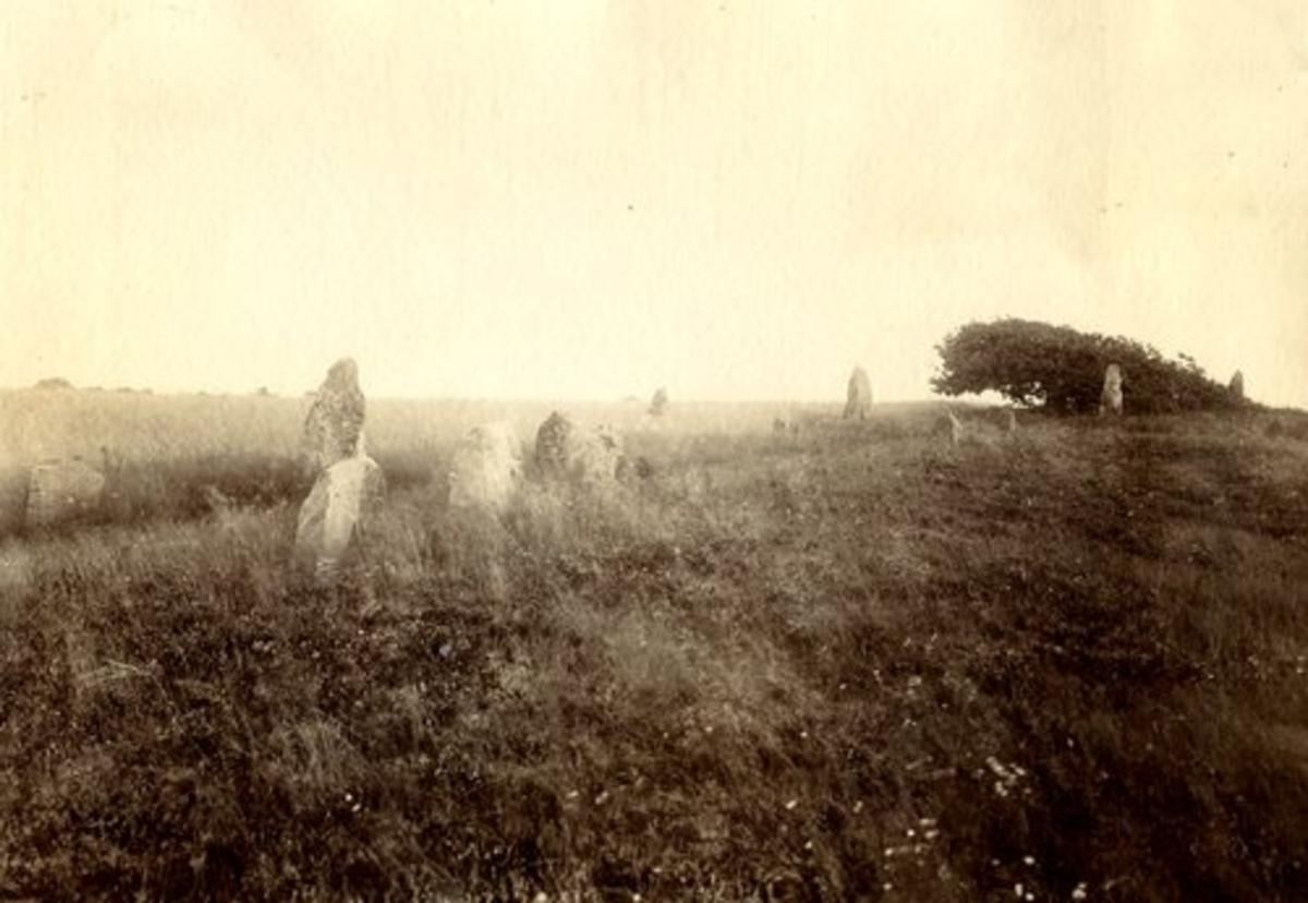 Tjärby stenar, Örelidsgravfältet