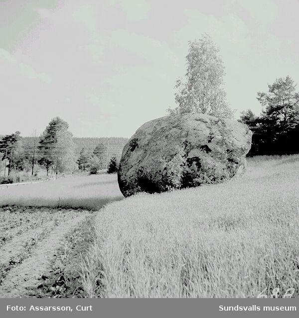 """Jätten Potters sten"" i Säters by."