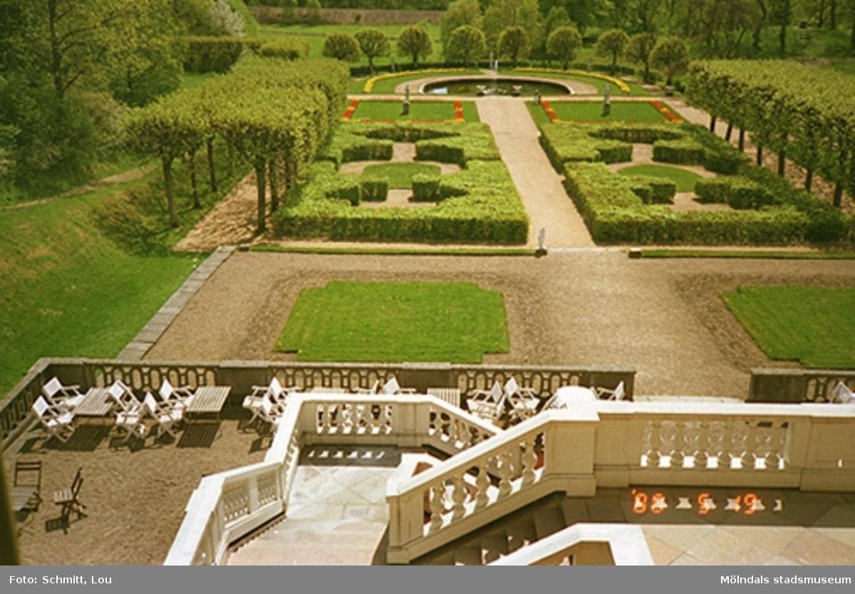 En översiktsbild av en del av Gunnebo slottspark med dammen i bakgrunden, sett från slottets trappsats.