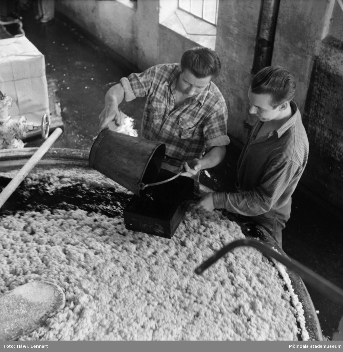 Två män i arbete vid holländeri på Papyrus i Mölndal, 6/5 1955.