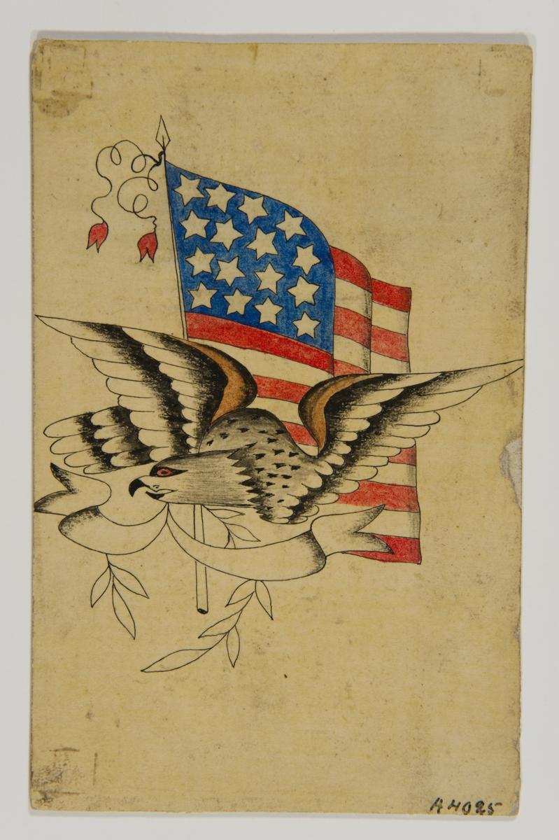 Tatueringsförlaga. En örn med en banderoll i näbben framför en amerikansk flagga.
