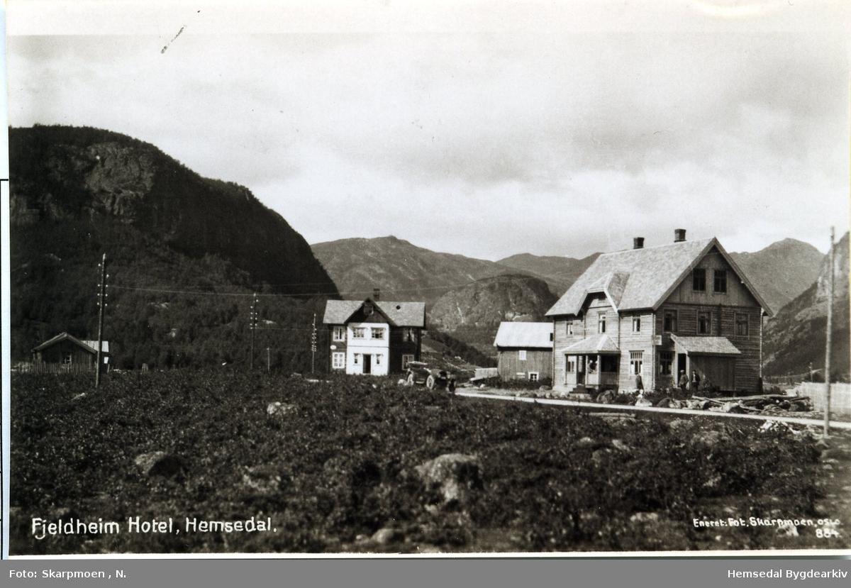 Fjeldheim Hotell og vestre Tuv i Hemsedal