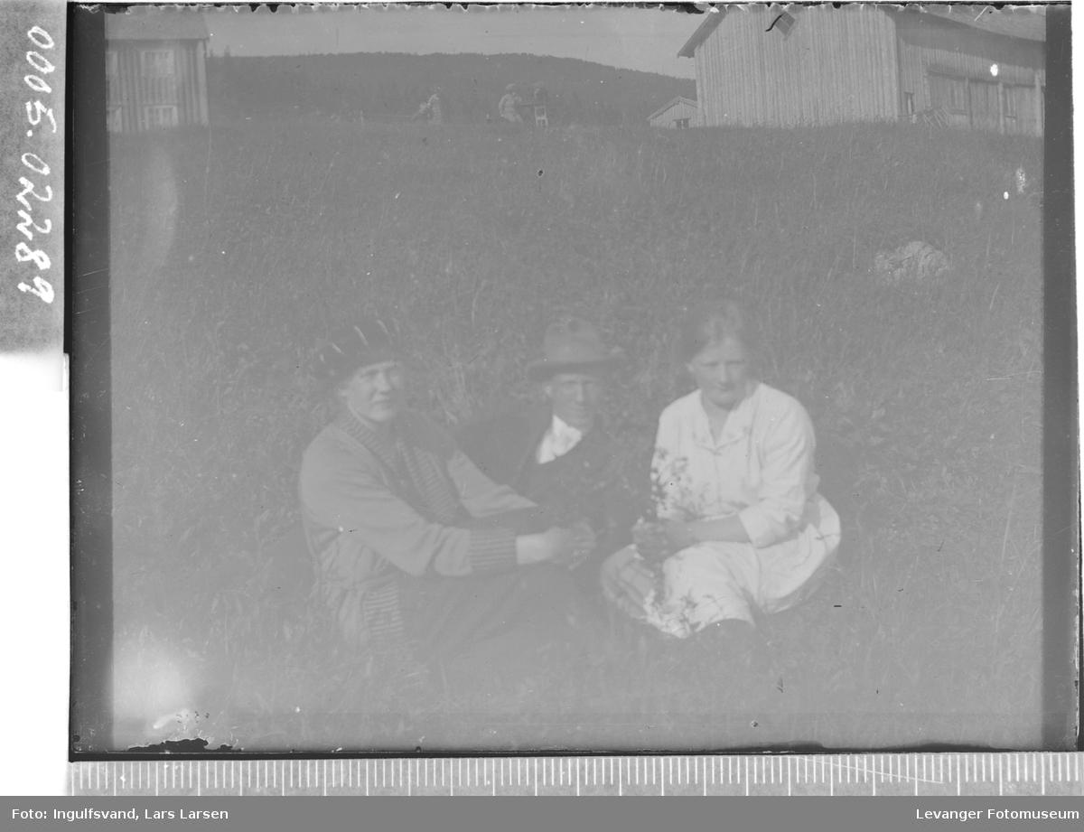 Gruppebilde av to kvinner og en mann som sitter i en eng.
