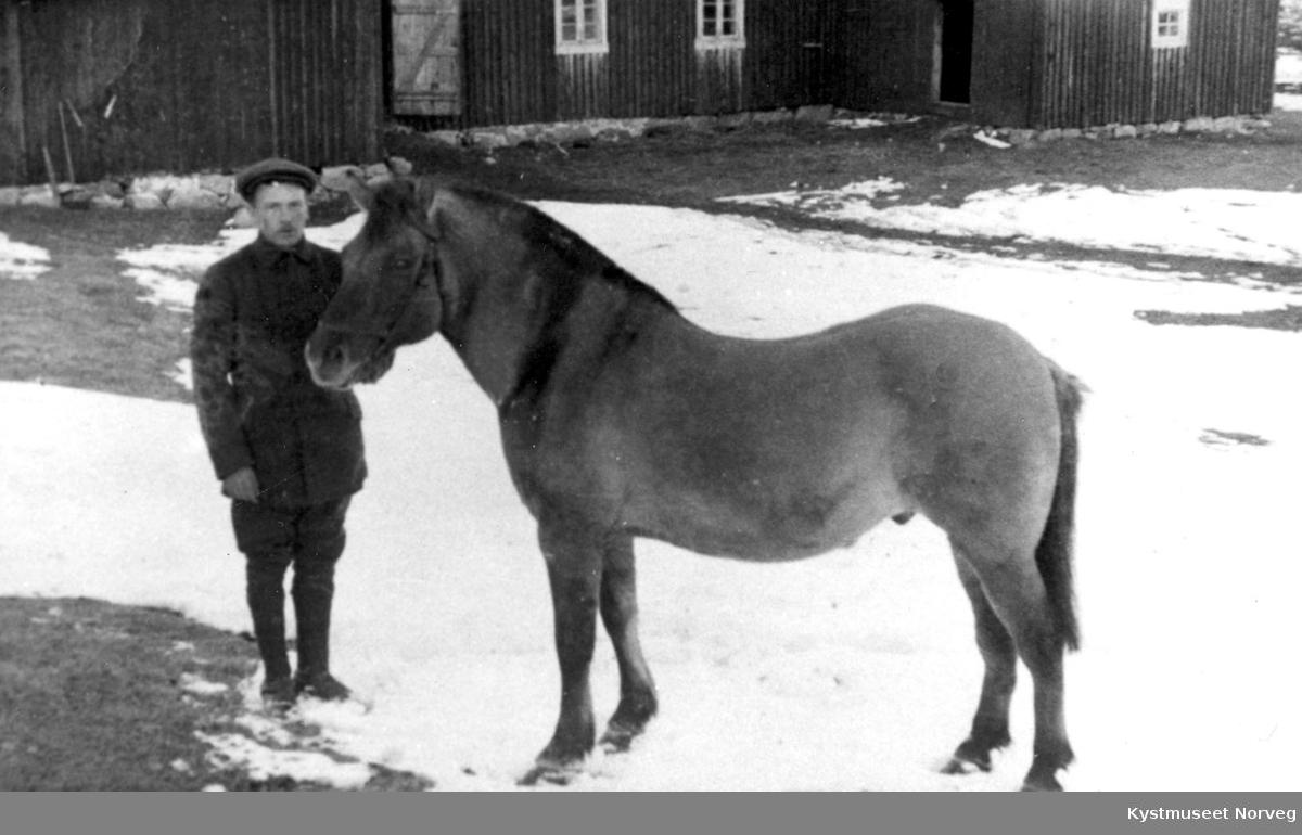 Ung ukjent mann med hest