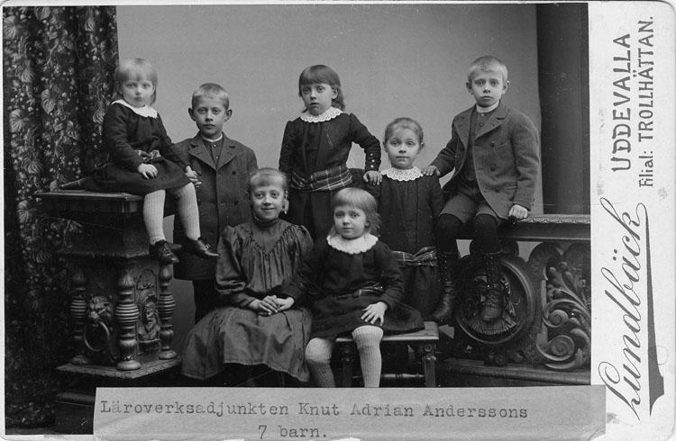 Familjen Knut Adrian Andersson och Augusta Thelins sju barn 1893