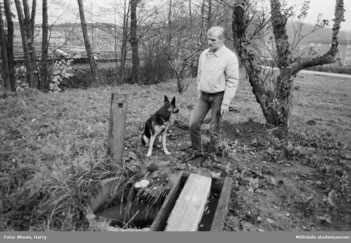 """""""Bengt Olsson med sin schäfer Olsson vid den 10 m djupa och vattenfyllda brunnen."""" Våmmedal i Kållered, år 1984.  För mer information om bilden se under tilläggsinformation."""