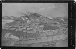 Fotografi av målning över Norra hamnen och Skansberget, Udde