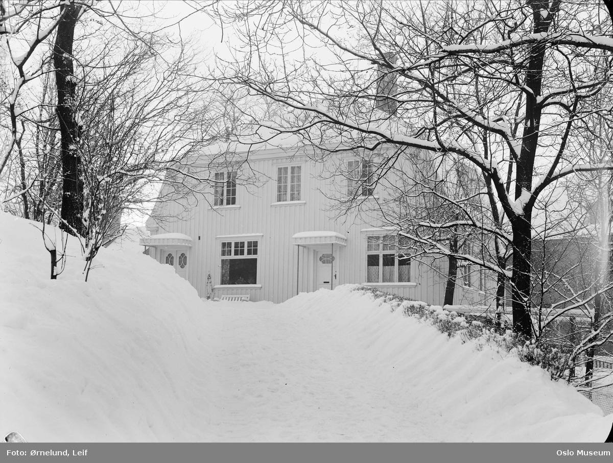 hage, oppkjørsel, snø, villa