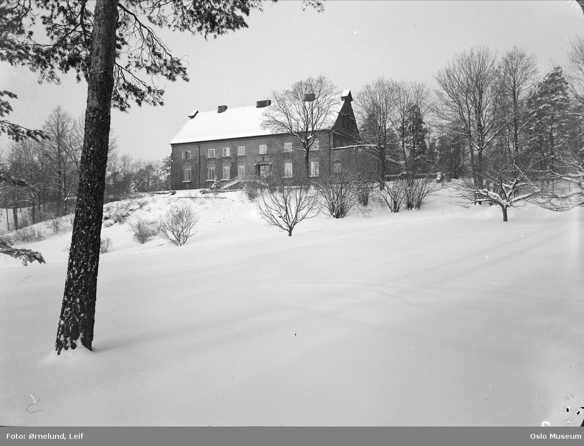 hage, villa, snø
