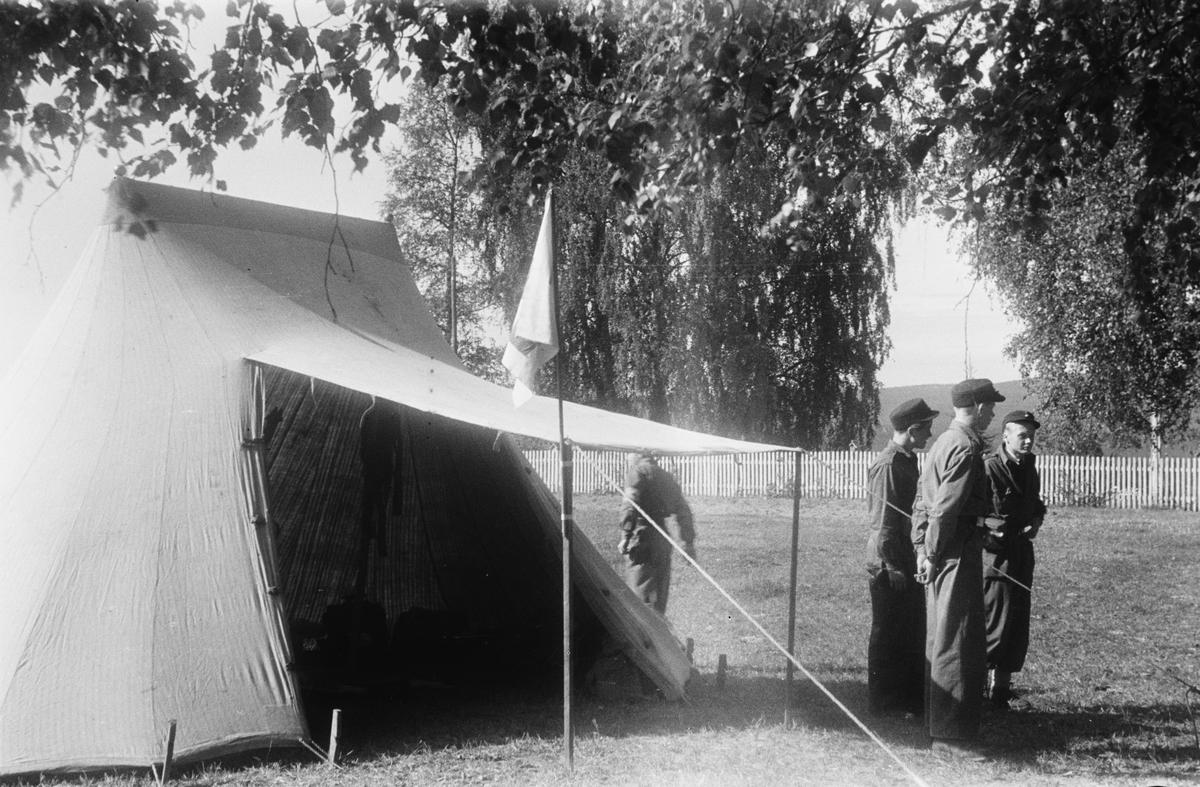 Militærøvelse. Tre soldater ved Telt.