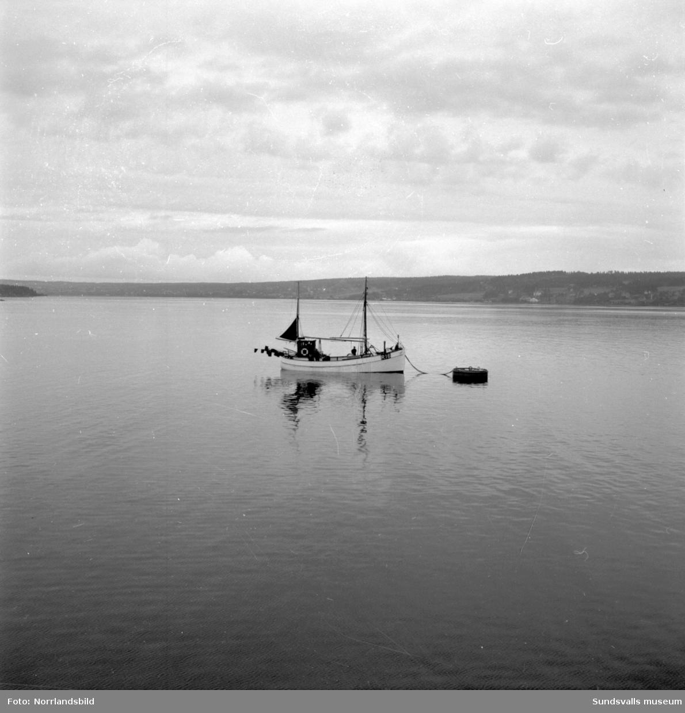 Båt på grund vid Kubikenborg.