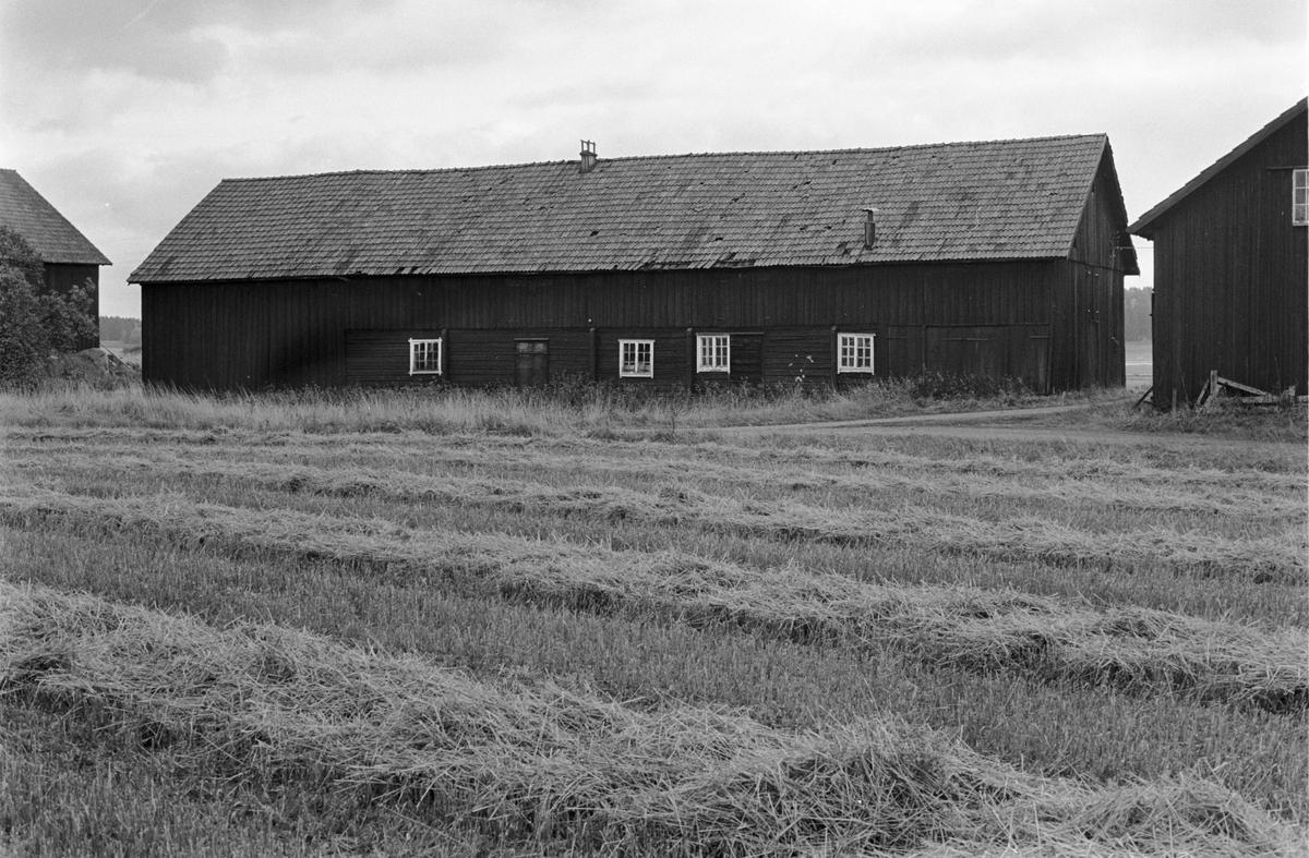 Ladugård, Stora Sundby, Tibble-Sundby 3:1, Skogs-Tibble socken, Uppland 1985