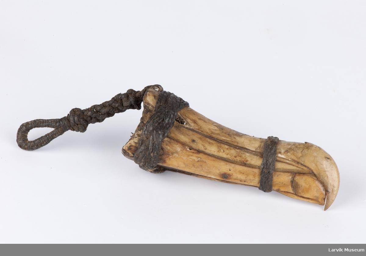 Albatrossnebb, laget til nålehus for seilnåler