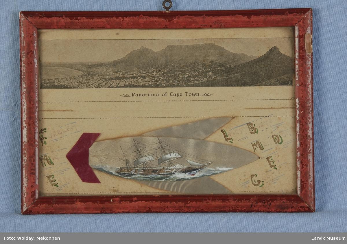 Barken Arcadia av Larvik malt på sølvblad, eller også kalt silverleaf, Kapp-blad eller sølvløv. Tre slike blad er samlet, panorama over Cape town over.