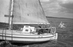 Lunkentuss anländer till Vindhem efter tre år till havs och