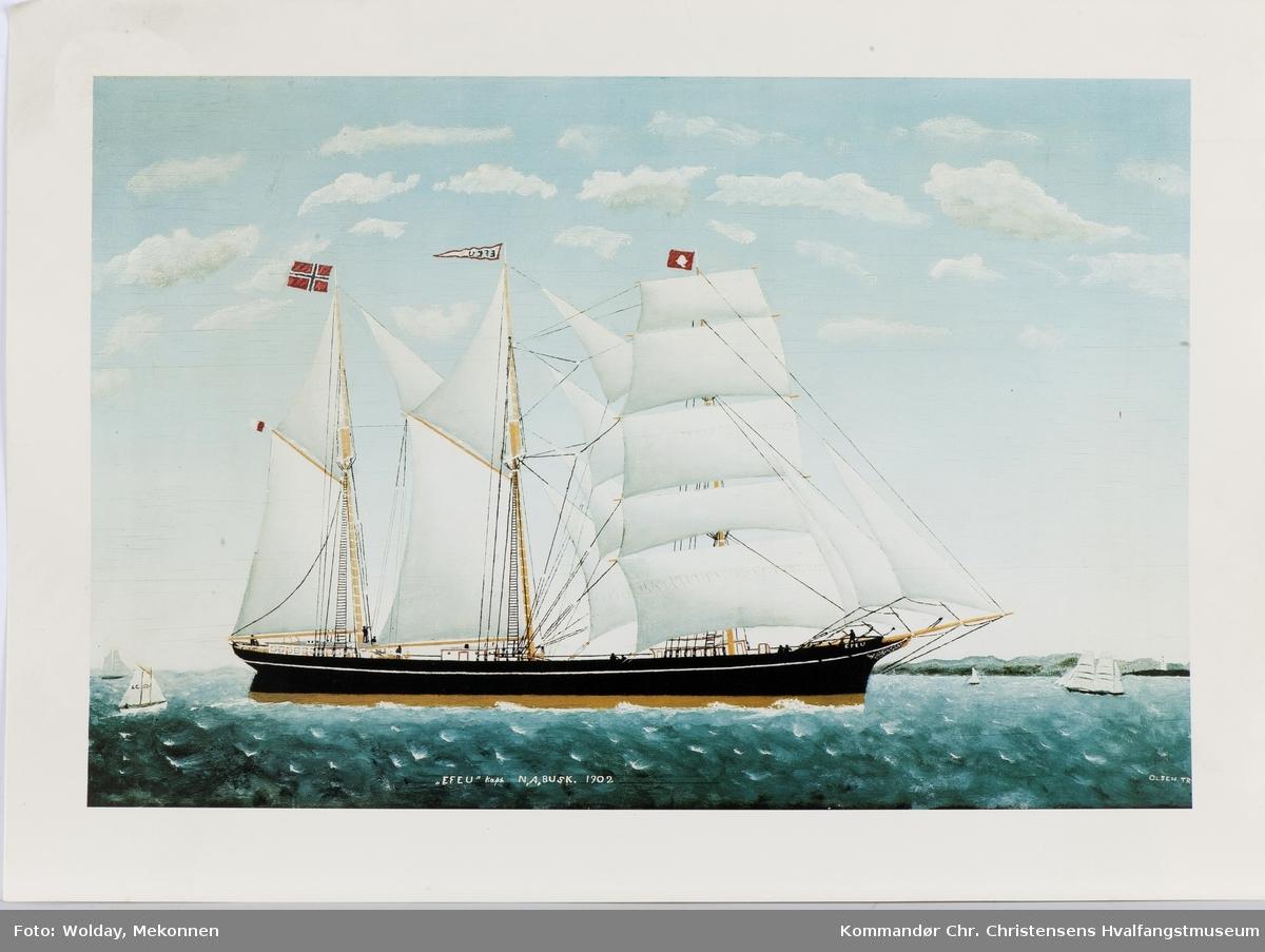 EFEU Nasjon: Norsk Type: Skonnertskip Byggeår: 1878 Byggested: Bideford, Prince Edward Island, Canada Verft: J. W. Richards Ombygging: Ombygget 1907