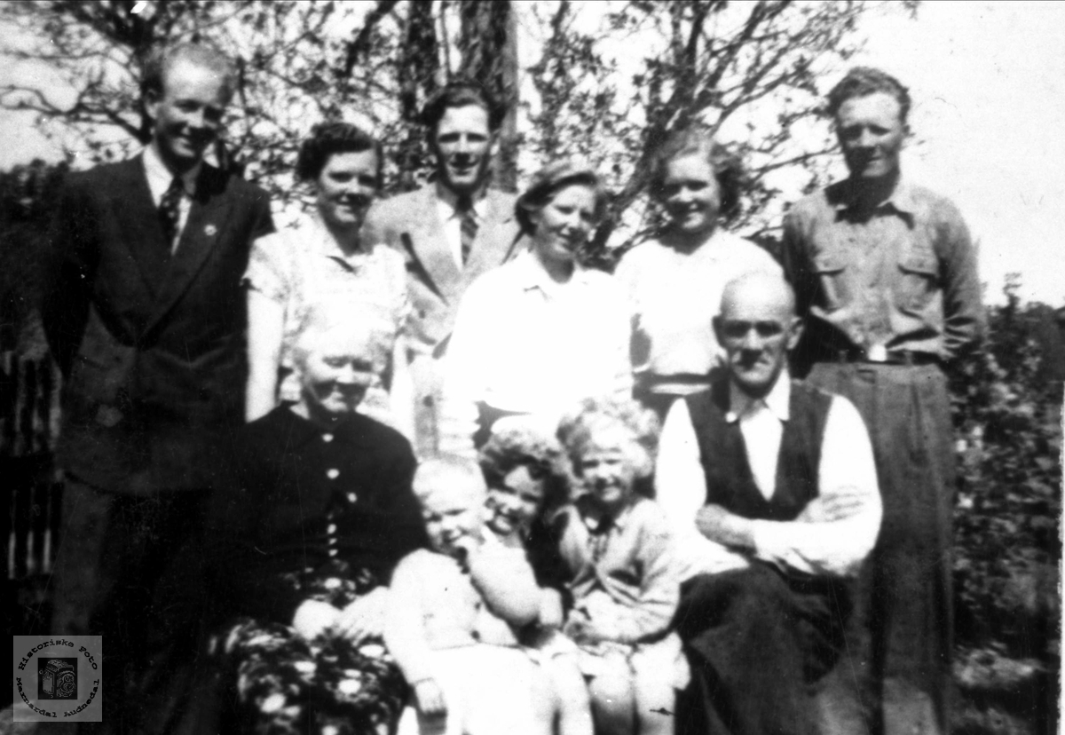 Familien Beint Usland, Høye